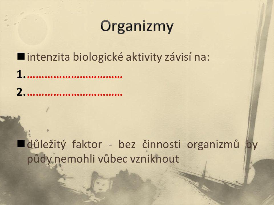 intenzita biologické aktivity závisí na: 1.…………………………… 2.…………………………… důležitý faktor - bez činnosti organizmů by půdy nemohli vůbec vzniknout