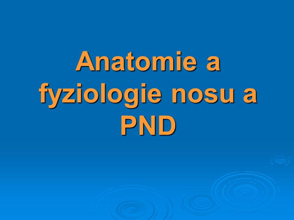 Anatomie a fyziologie nosu a PND