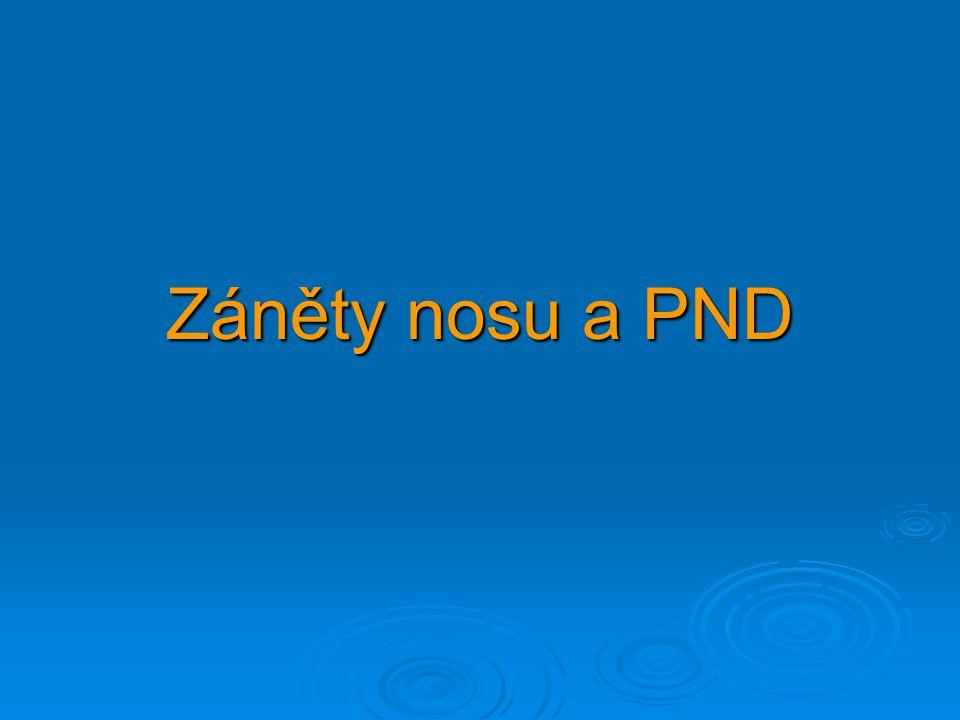 Záněty nosu a PND
