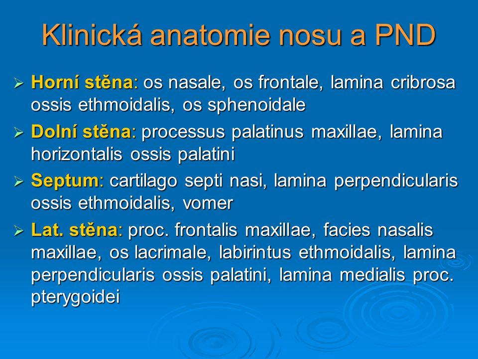 Klinická anatomie nosu a PND  Horní stěna: os nasale, os frontale, lamina cribrosa ossis ethmoidalis, os sphenoidale  Dolní stěna: processus palatin