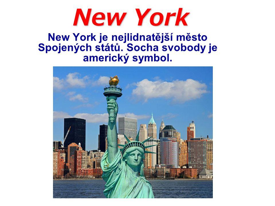 Město bylo založeno Nizozemci v roce 1625 a od roku 1790 je největším městem Spojených států.