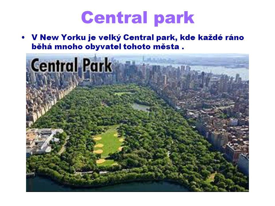 Central park V New Yorku je velký Central park, kde každé ráno běhá mnoho obyvatel tohoto města.