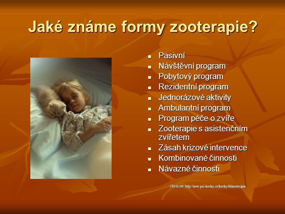 Jaké známe formy zooterapie? Pasivní Pasivní Návštěvní program Návštěvní program Pobytový program Pobytový program Rezidentní program Rezidentní progr