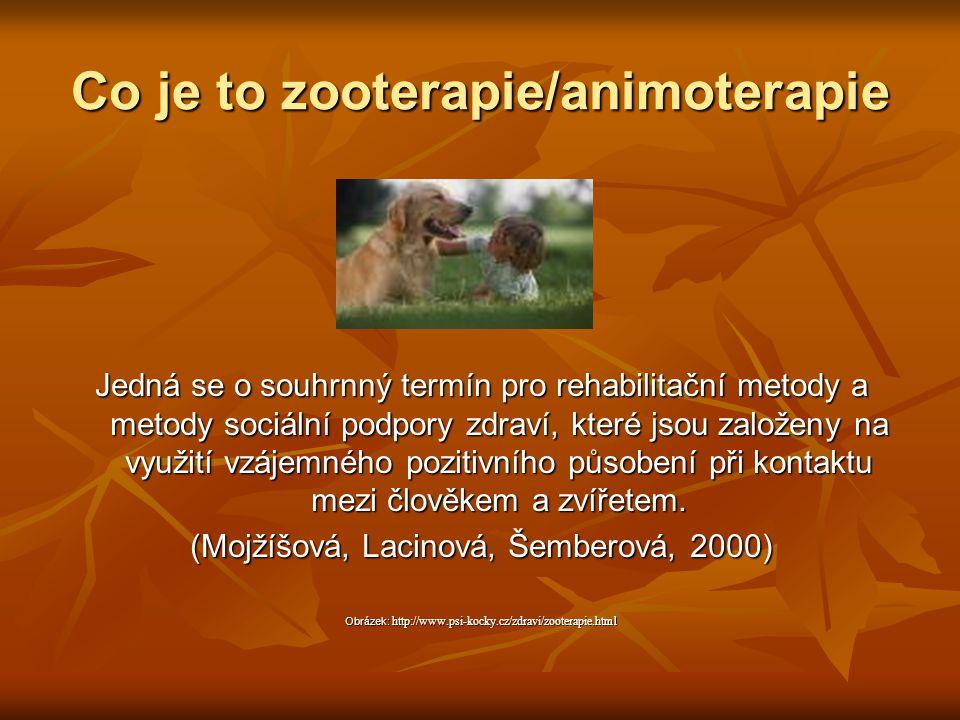 Co je to zooterapie/animoterapie Jedná se o souhrnný termín pro rehabilitační metody a metody sociální podpory zdraví, které jsou založeny na využití