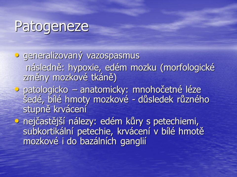 Patogeneze generalizovaný vazospasmus generalizovaný vazospasmus následně: hypoxie, edém mozku (morfologické změny mozkové tkáně) následně: hypoxie, e