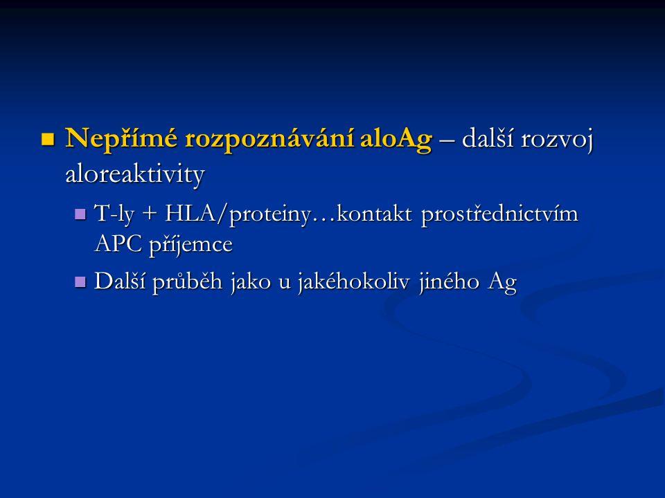 Nepřímé rozpoznávání aloAg – další rozvoj aloreaktivity Nepřímé rozpoznávání aloAg – další rozvoj aloreaktivity T-ly + HLA/proteiny…kontakt prostředni