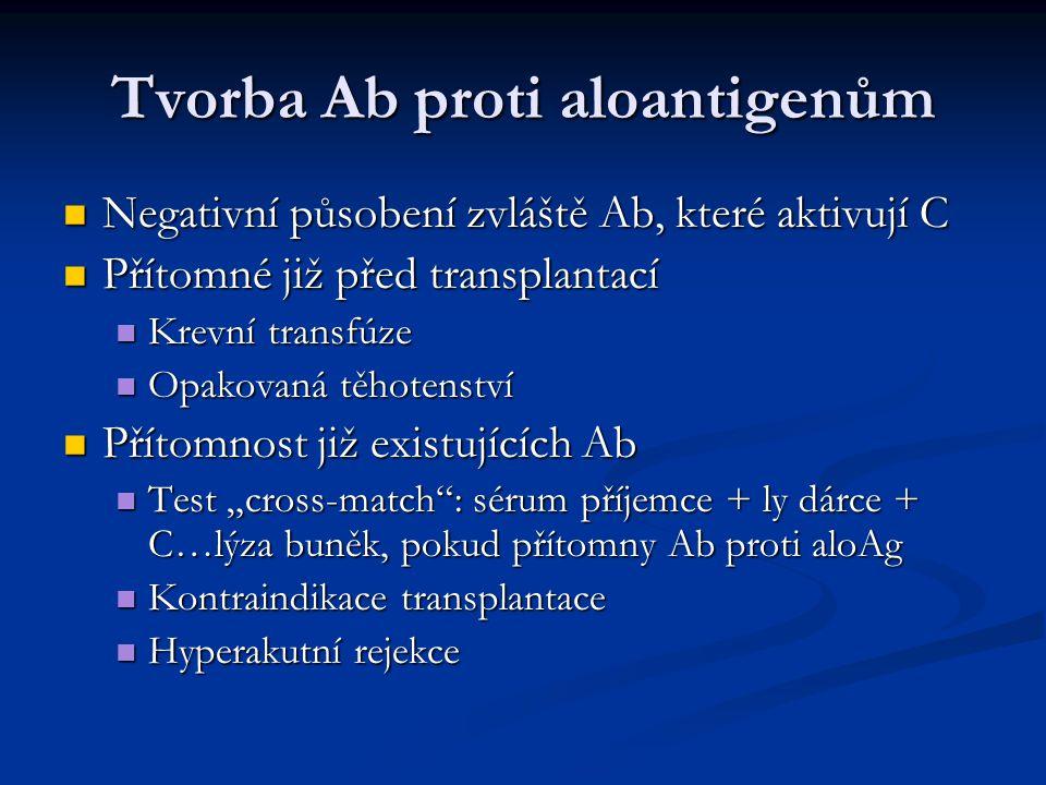 Tvorba Ab proti aloantigenům Negativní působení zvláště Ab, které aktivují C Negativní působení zvláště Ab, které aktivují C Přítomné již před transpl