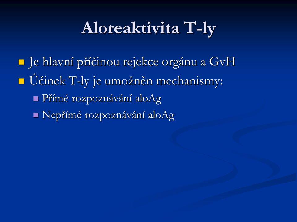 Aloreaktivita T-ly Je hlavní příčinou rejekce orgánu a GvH Je hlavní příčinou rejekce orgánu a GvH Účinek T-ly je umožněn mechanismy: Účinek T-ly je u