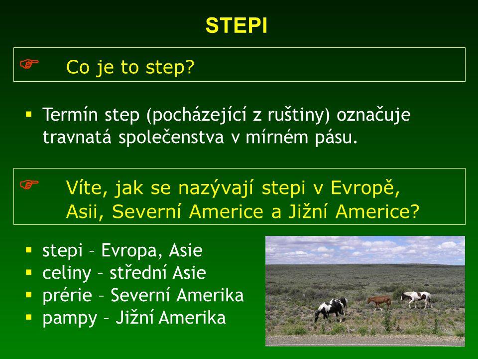  Co je to step?  Termín step (pocházející z ruštiny) označuje travnatá společenstva v mírném pásu.  Víte, jak se nazývají stepi v Evropě, Asii, Sev