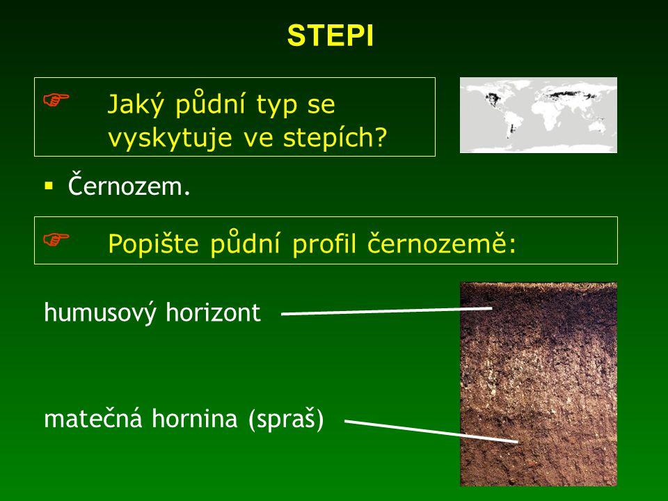  Jaký půdní typ se vyskytuje ve stepích. Černozem.