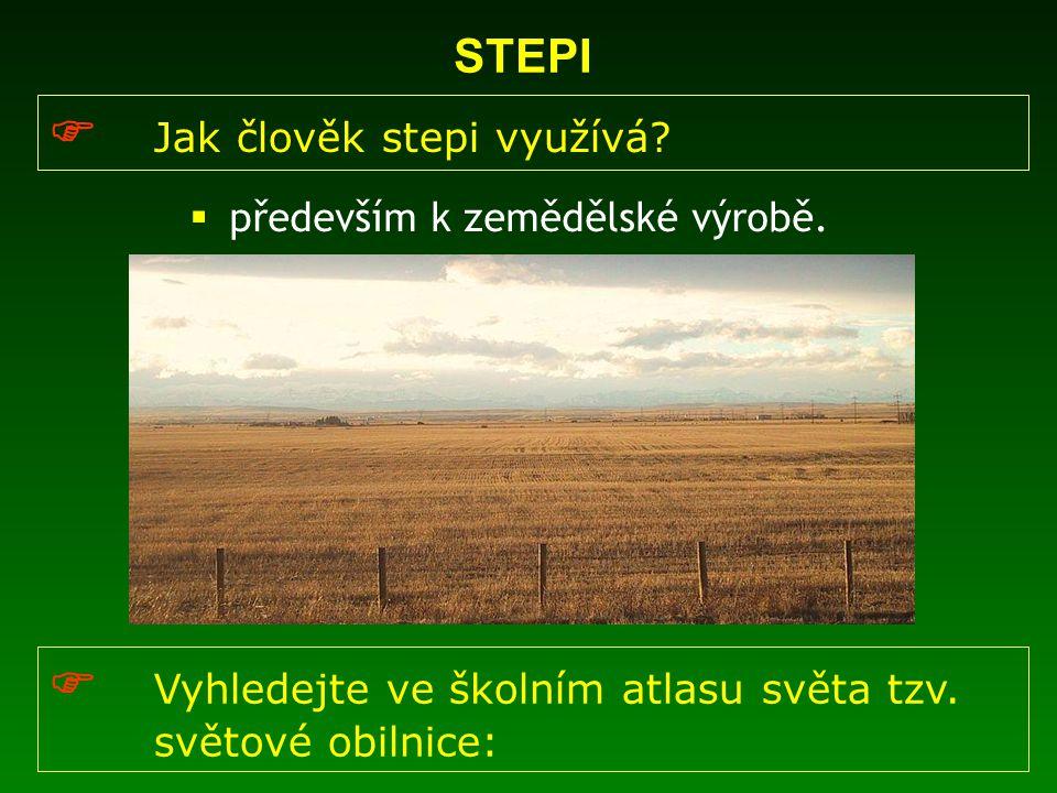 STEPI  Jak člověk stepi využívá?  především k zemědělské výrobě.  Vyhledejte ve školním atlasu světa tzv. světové obilnice: