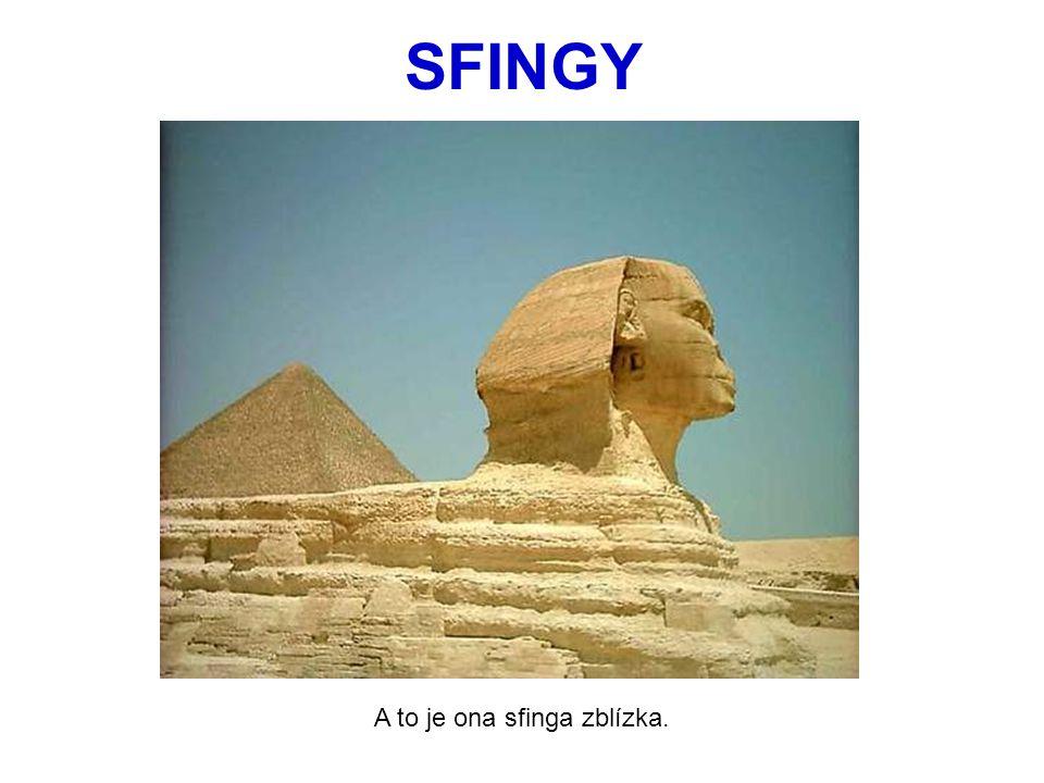 SFINGY A to je ona sfinga zblízka.