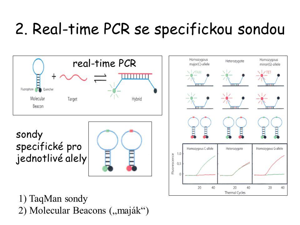"""2. Real-time PCR se specifickou sondou 1) TaqMan sondy 2) Molecular Beacons (""""maják"""") real-time PCR sondy specifické pro jednotlivé alely"""