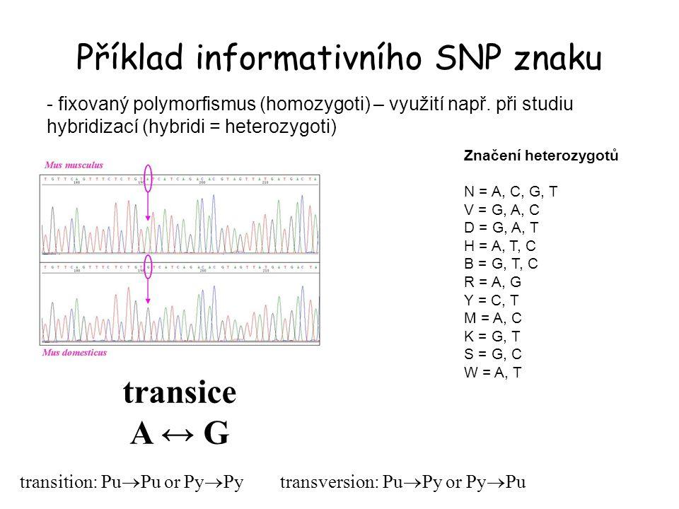 Příklad informativního SNP znaku transice A ↔ G transition: Pu  Pu or Py  Py transversion: Pu  Py or Py  Pu - fixovaný polymorfismus (homozygoti)