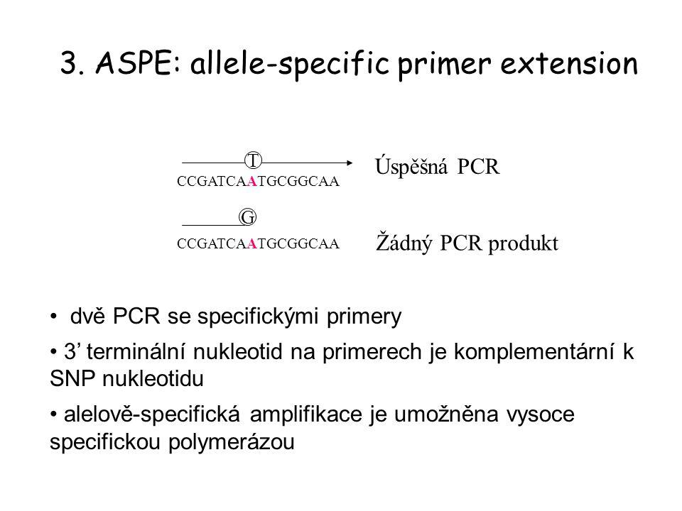 3. ASPE: allele-specific primer extension CCGATCAATGCGGCAA T G dvě PCR se specifickými primery 3' terminální nukleotid na primerech je komplementární