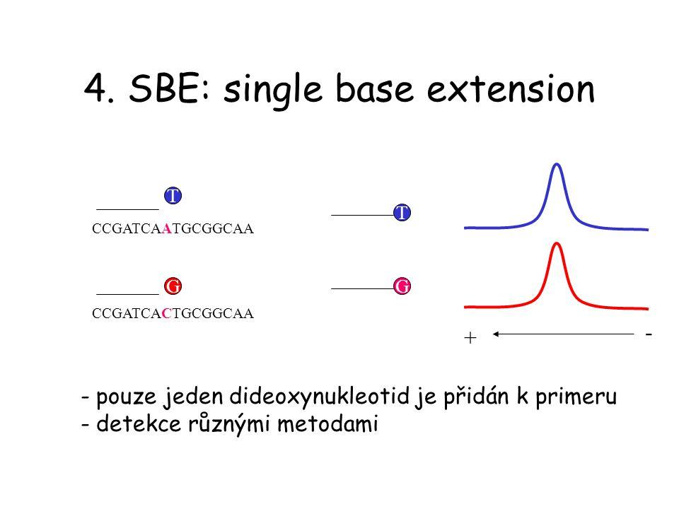 4. SBE: single base extension CCGATCAATGCGGCAA CCGATCACTGCGGCAA T G - pouze jeden dideoxynukleotid je přidán k primeru - detekce různými metodami TG +