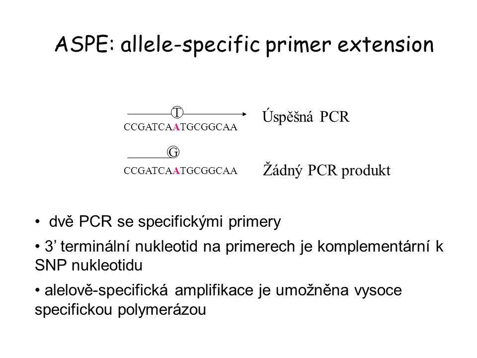 ASPE: allele-specific primer extension CCGATCAATGCGGCAA T G dvě PCR se specifickými primery 3' terminální nukleotid na primerech je komplementární k S