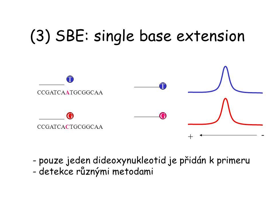 (3) SBE: single base extension CCGATCAATGCGGCAA CCGATCACTGCGGCAA T G - pouze jeden dideoxynukleotid je přidán k primeru - detekce různými metodami TG