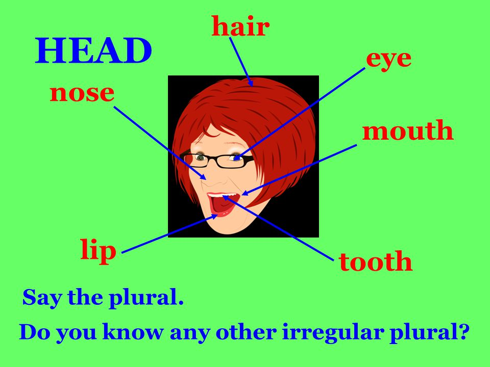 hair eye mouth tooth nose lip HEAD Say the plural. Do you know any other irregular plural?