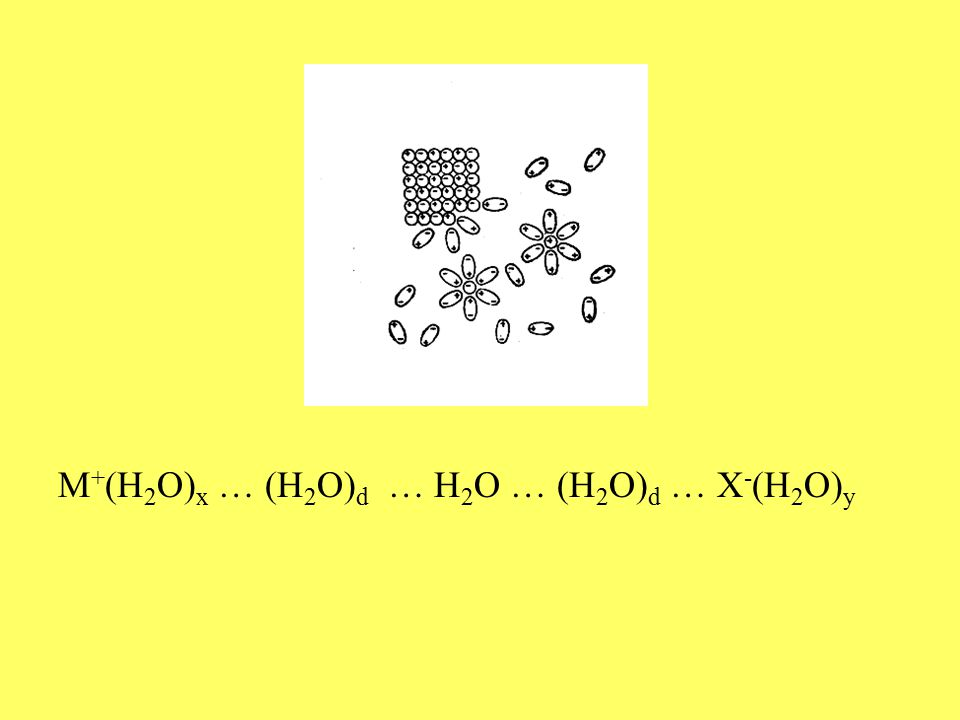 M + (H 2 O) x … (H 2 O) d … H 2 O … (H 2 O) d … X - (H 2 O) y