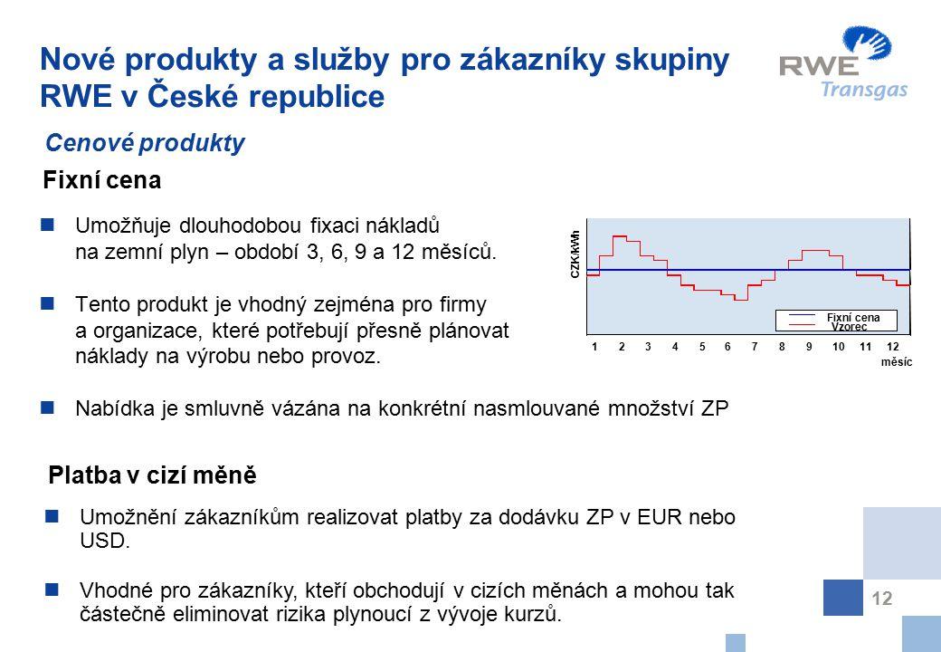 12 Nové produkty a služby pro zákazníky skupiny RWE v České republice Umožňuje dlouhodobou fixaci nákladů na zemní plyn – období 3, 6, 9 a 12 měsíců.