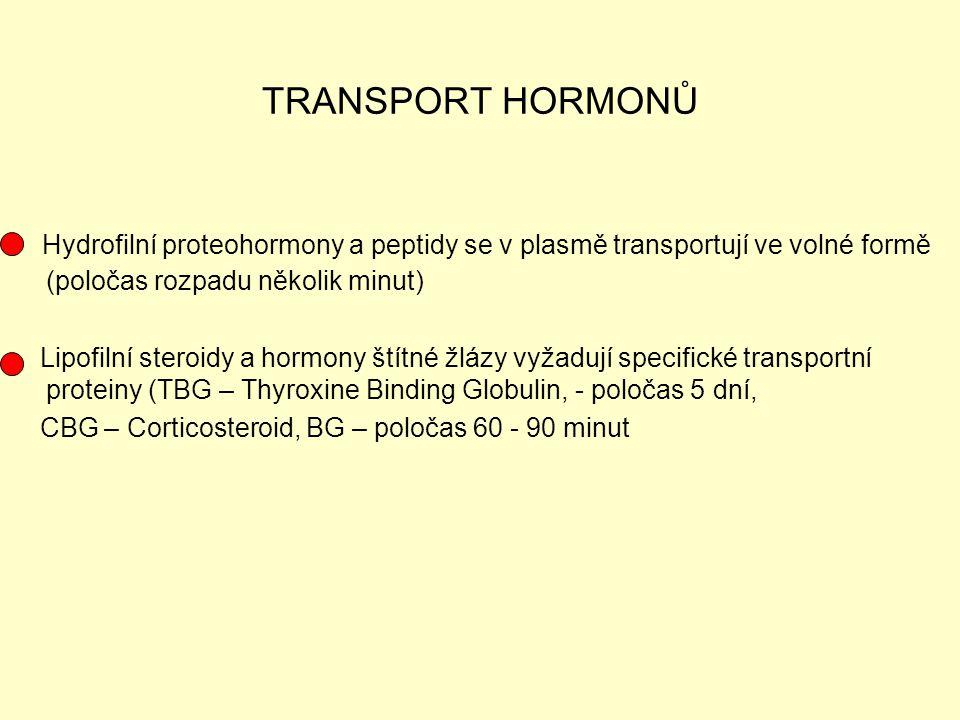 TRANSPORT HORMONŮ Hydrofilní proteohormony a peptidy se v plasmě transportují ve volné formě (poločas rozpadu několik minut) Lipofilní steroidy a horm
