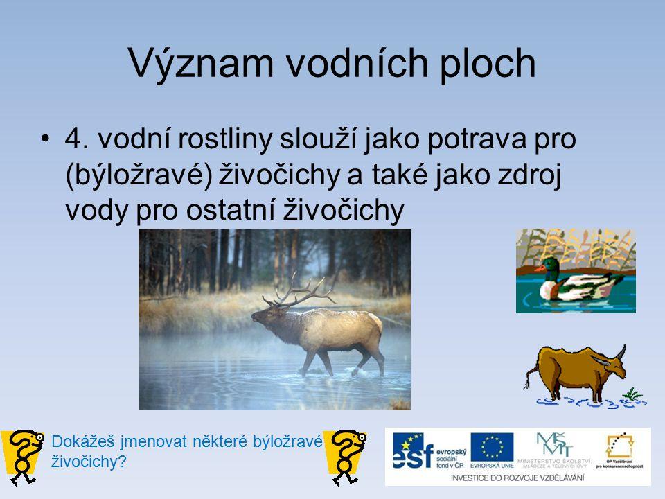 Význam vodních ploch 4.