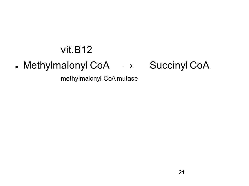 vit.B12 Methylmalonyl CoA → Succinyl CoA methylmalonyl-CoA mutase 21