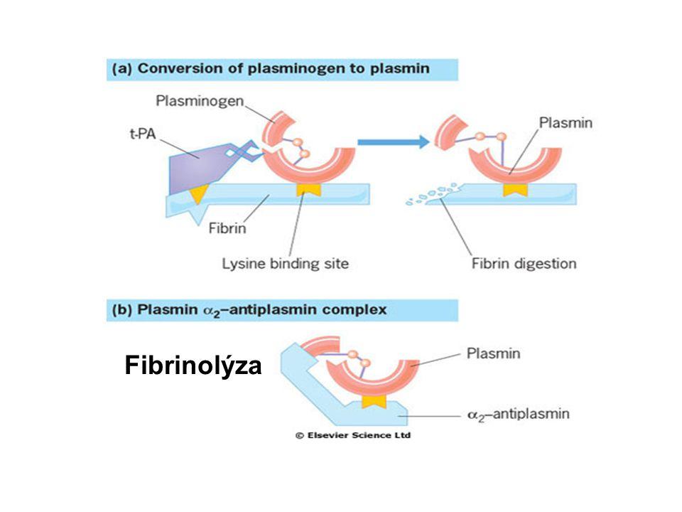 Fibrinolýza