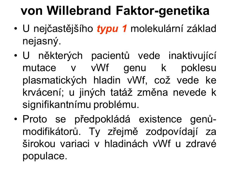 von Willebrand Faktor-genetika U nejčastějšího typu 1 molekulární základ nejasný. U některých pacientů vede inaktivující mutace v vWf genu k poklesu p