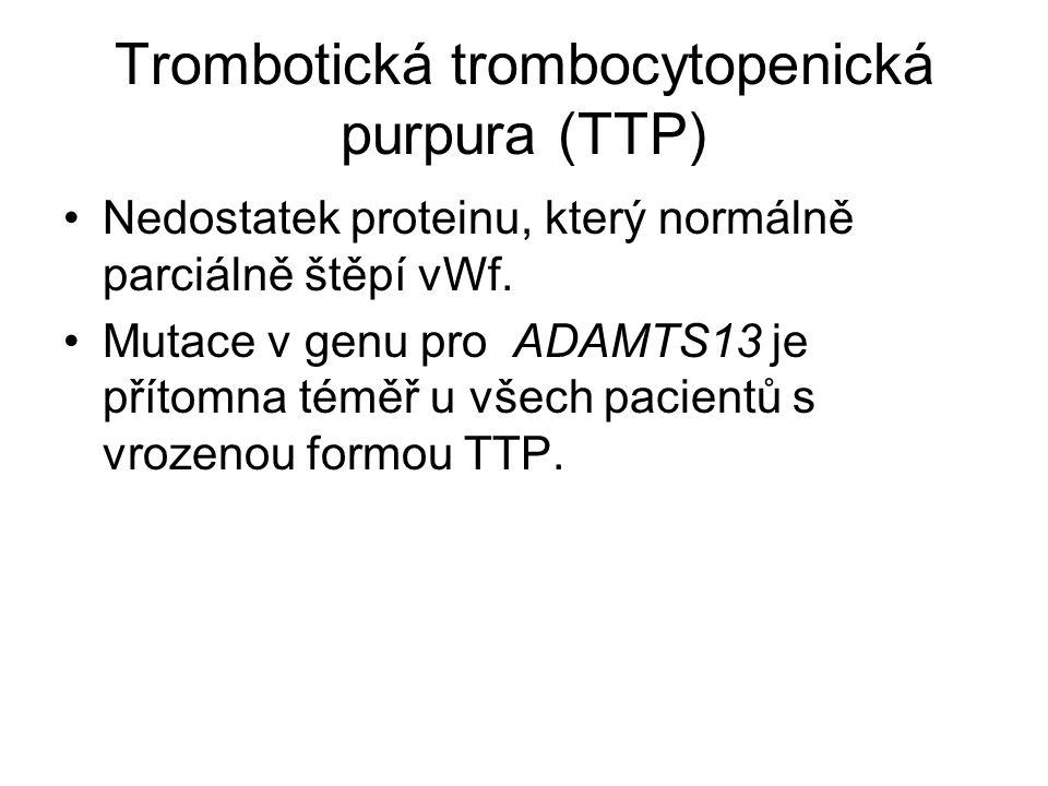 Trombotická trombocytopenická purpura (TTP) Nedostatek proteinu, který normálně parciálně štěpí vWf.