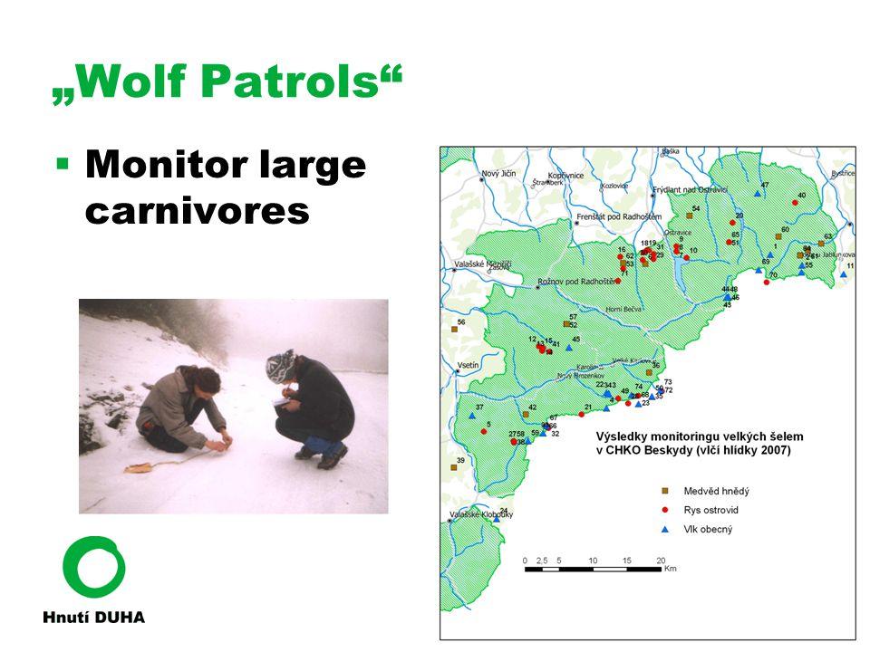 """Wolf Patrols  Monitor large carnivores"