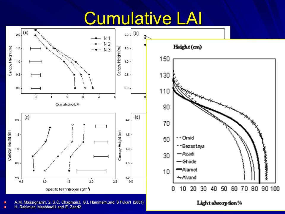 Cumulative LAI A.M. Massignam1, 2, S.C. Chapman3, G.L Hammer4,and S Fukai1 (2001) H.