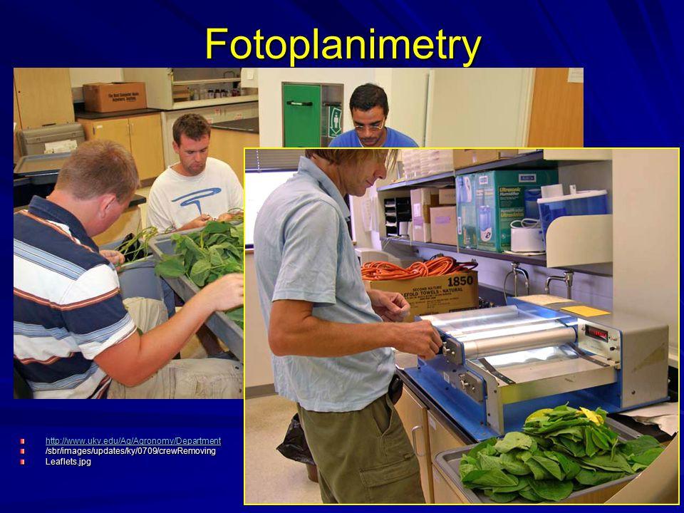 Fotoplanimetry http://www.uky.edu/Ag/Agronomy/Department /sbr/images/updates/ky/0709/crewRemovingLeaflets.jpg