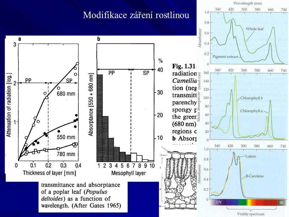 Leaf area index nepřímé metody stanovení/měření Source of photo: http://www.sylva.org.uk/blog/category/oneoak-project/science/ Hemisférická fotografie plus vyhodnocovací software