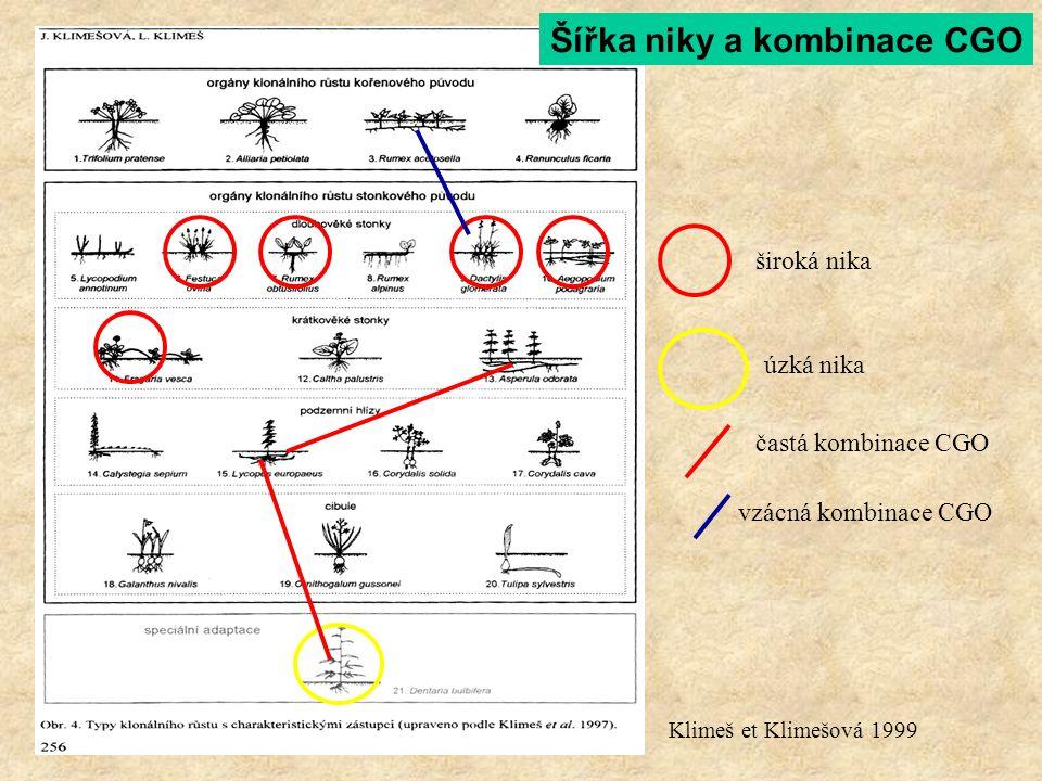 široká nika úzká nika Klimeš et Klimešová 1999 častá kombinace CGO vzácná kombinace CGO Šířka niky a kombinace CGO