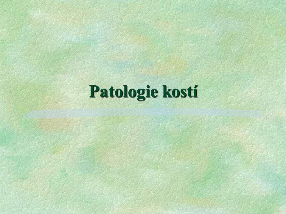 Patologie kostí