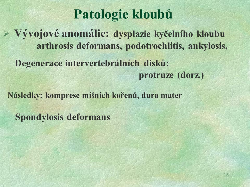 16 Patologie kloubů  Vývojové anomálie: dysplazie kyčelního kloubu arthrosis deformans, podotrochlitis, ankylosis, Degenerace intervertebrálních disků: protruze (dorz.) Následky: komprese míšních kořenů, dura mater Spondylosis deformans