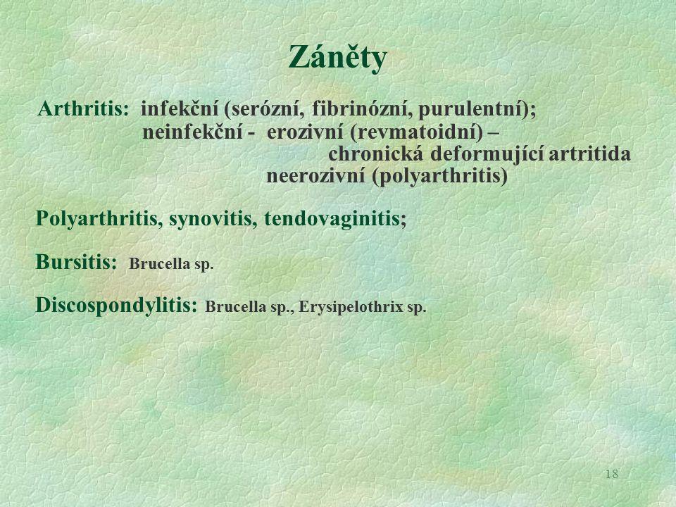 18 Záněty Arthritis: infekční (serózní, fibrinózní, purulentní); neinfekční - erozivní (revmatoidní) – chronická deformující artritida neerozivní (polyarthritis) Polyarthritis, synovitis, tendovaginitis; Bursitis: Brucella sp.
