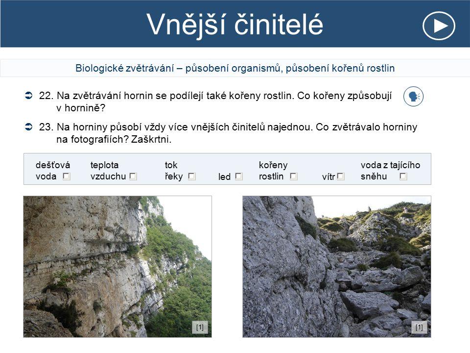 Vnější činitelé Biologické zvětrávání – působení organismů, působení kořenů rostlin  22. Na zvětrávání hornin se podílejí také kořeny rostlin. Co koř