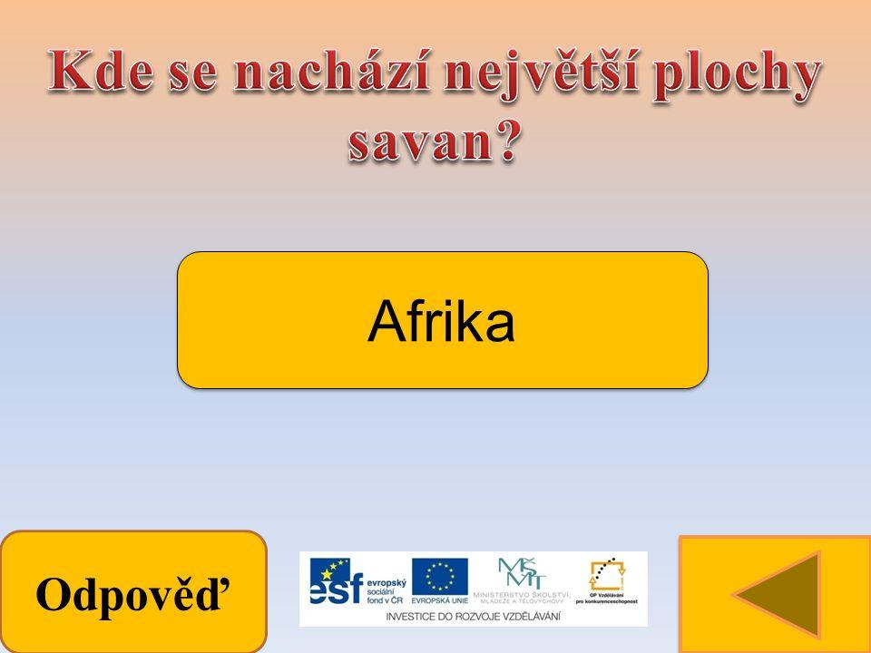 Odpověď Afrika