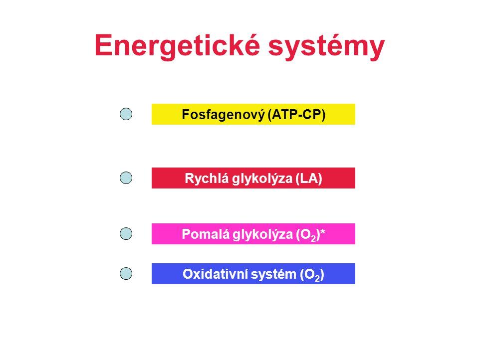 Energetické systémy Fosfagenový (ATP-CP) Rychlá glykolýza (LA) Oxidativní systém (O 2 ) Pomalá glykolýza (O 2 )*