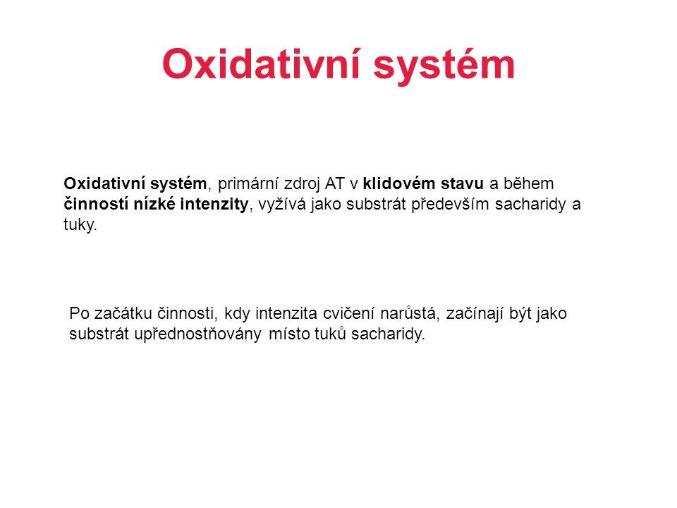 Oxidativní systém Oxidativní systém, primární zdroj AT v klidovém stavu a během činností nízké intenzity, vyžívá jako substrát především sacharidy a t