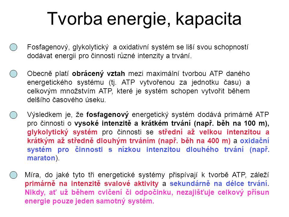 Tvorba energie, kapacita Fosfagenový, glykolytický a oxidativní systém se liší svou schopností dodávat energii pro činnosti různé intenzity a trvání.