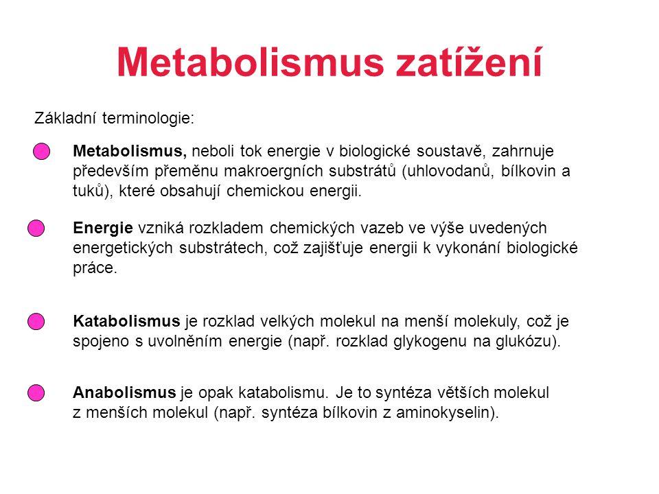 Metabolismus zatížení Základní terminologie: Metabolismus, neboli tok energie v biologické soustavě, zahrnuje především přeměnu makroergních substrátů