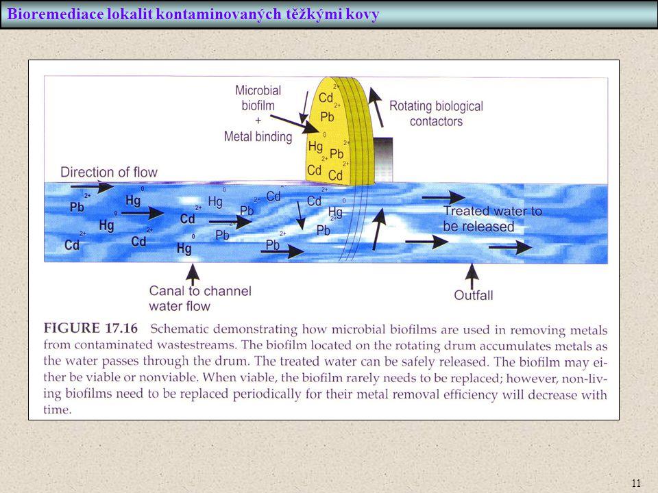 11 Bioremediace lokalit kontaminovaných těžkými kovy