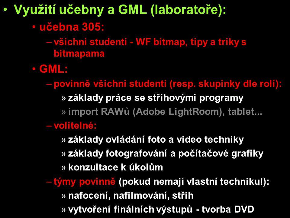 Využití učebny a GML (laboratoře): učebna 305: –všichni studenti - WF bitmap, tipy a triky s bitmapama GML: –povinně všichni studenti (resp. skupinky