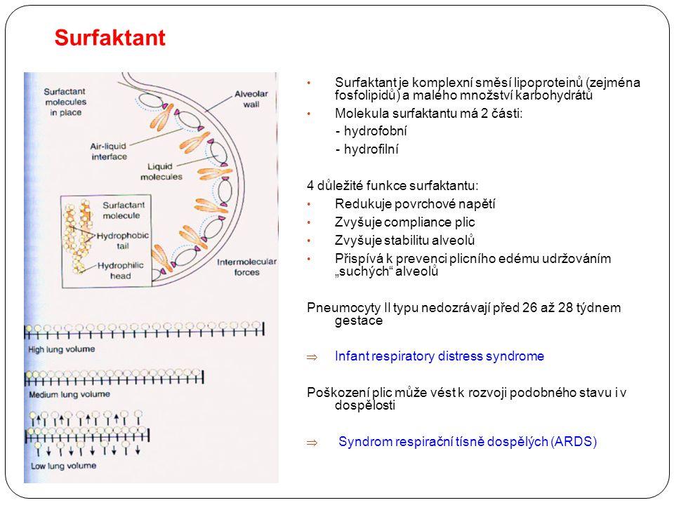 Surfaktant Surfaktant je komplexní směsí lipoproteinů (zejména fosfolipidů) a malého množství karbohydrátů Molekula surfaktantu má 2 části: - hydrofob
