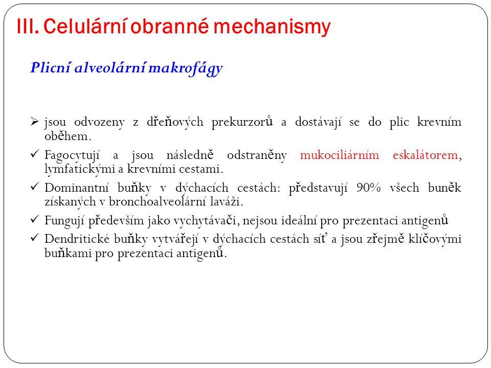 III. Celulární obranné mechanismy Plicní alveolární makrofágy  jsou odvozeny z d ř e ň ových prekurzor ů a dostávají se do plic krevním ob ě hem. Fag