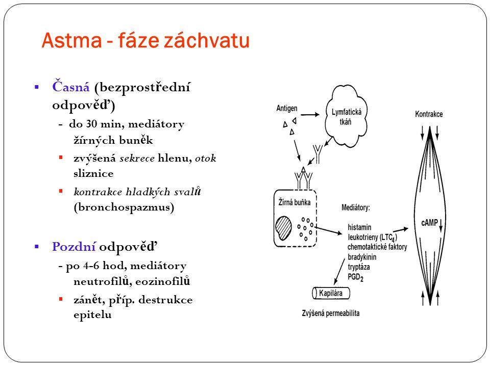 Astma - fáze záchvatu  Č asná (bezprost ř ední odpov ěď ) - do 30 min, mediátory žírných bun ě k  zvýšená sekrece hlenu, otok sliznice  kontrakce h